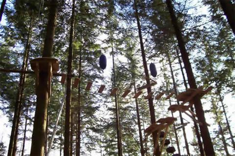 Treetop Adventure Snowdonia