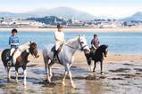 Tal y Foel Riding School